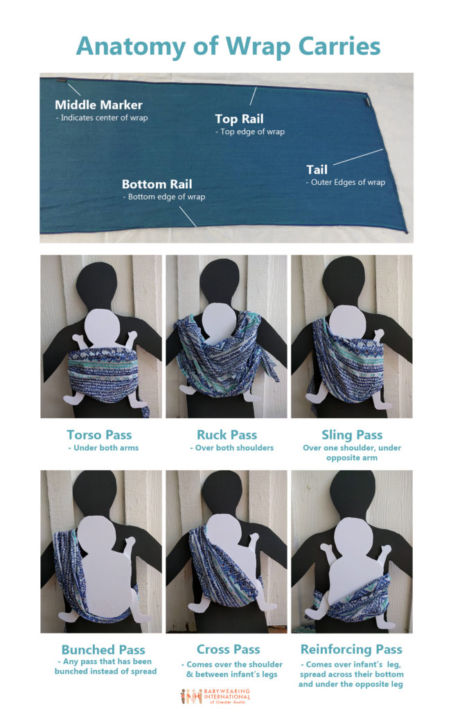 BWI_Wrap_Anatomy_Poster
